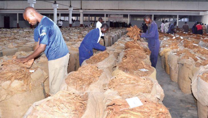 , Limbe Leaf shuts Blantyre factory