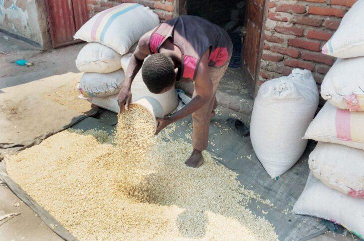 , Shepherd Bushiri considers maize sales in local markets