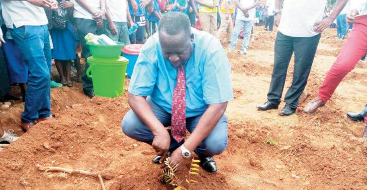 , Escom, Go Green in reforestation drive