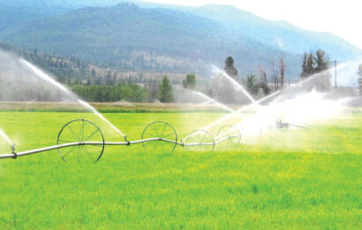 K167 billion irrigation project attracts mixed reactions