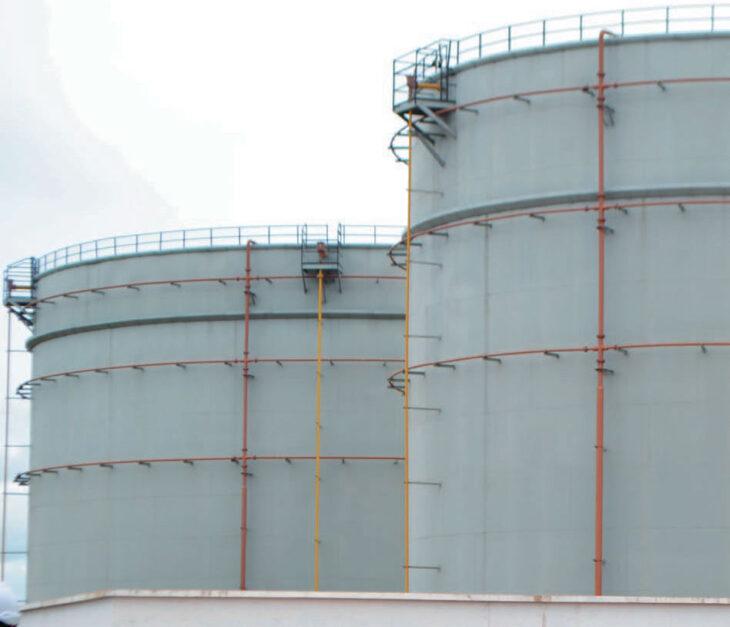Malawi has healthy fuel stocks—Mera