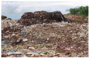 Blantyre waste management