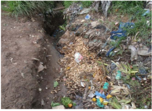 Lilongwe waste management