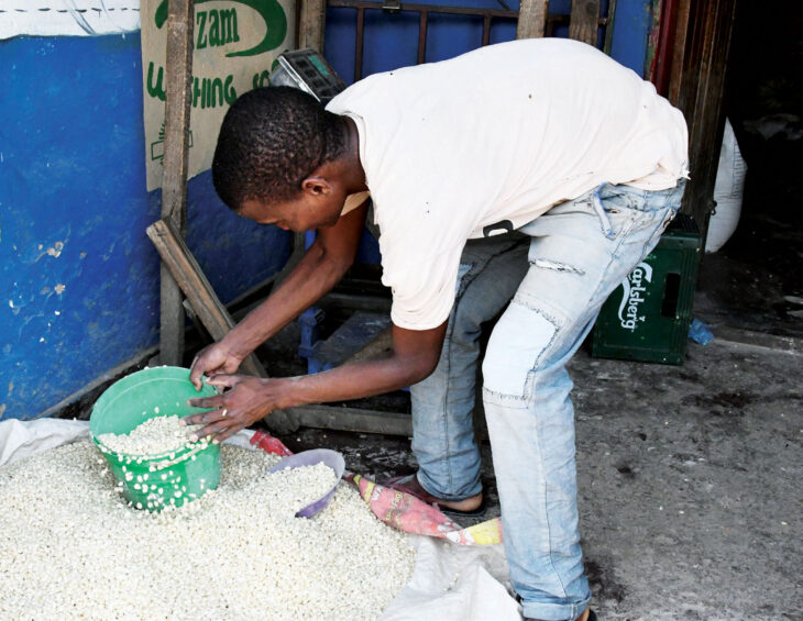 Maize prices up 6 percent