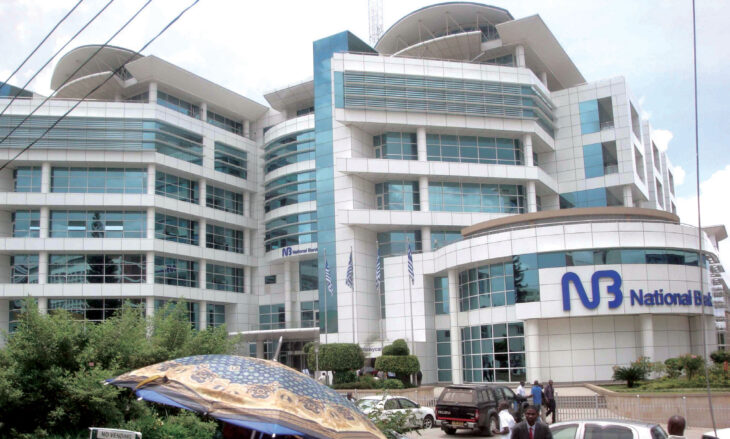NBM says advancing in Tanzania bank acquisition