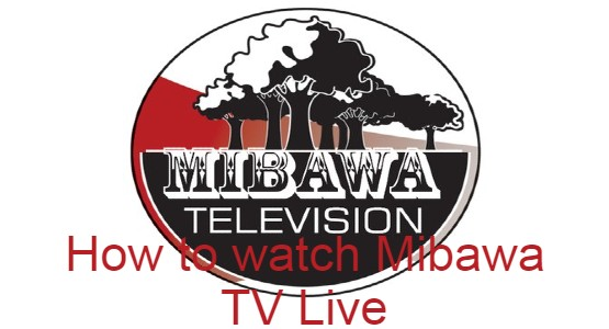 Mibawa TV Logo
