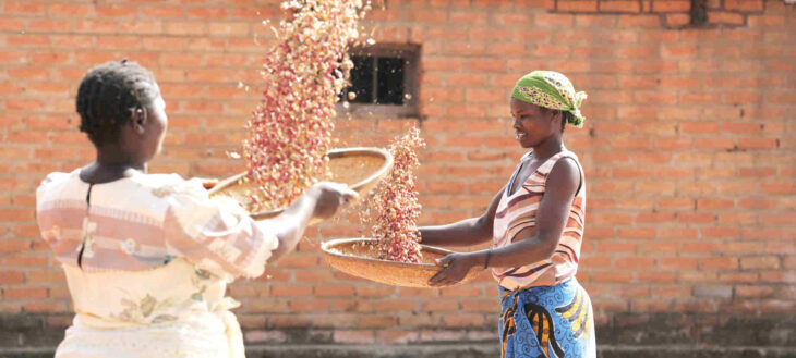 Soya hits K450/kg on rising export demand