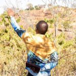 Shepherd Bushiri Nature Praying