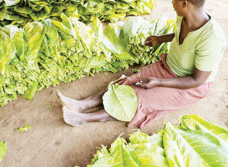 Malawi intensifies child labour fight